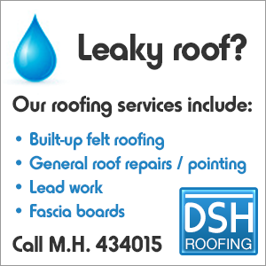 DSH Flat roofing