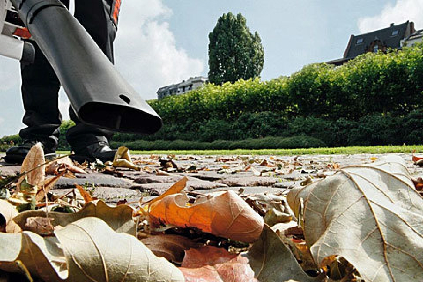 Leaf Collection - Ideal for Autumn months when you want to tidy up those fallen leaves.
