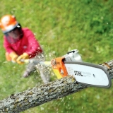 Tree Pruning - Ground level pruning to ensure trees stay healthy.