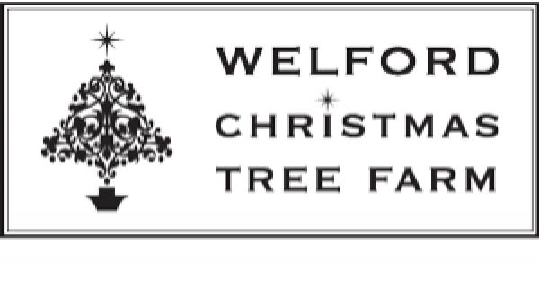 Welford Christmas Tree Farm